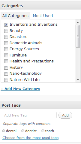 add categories and post tags WordPress